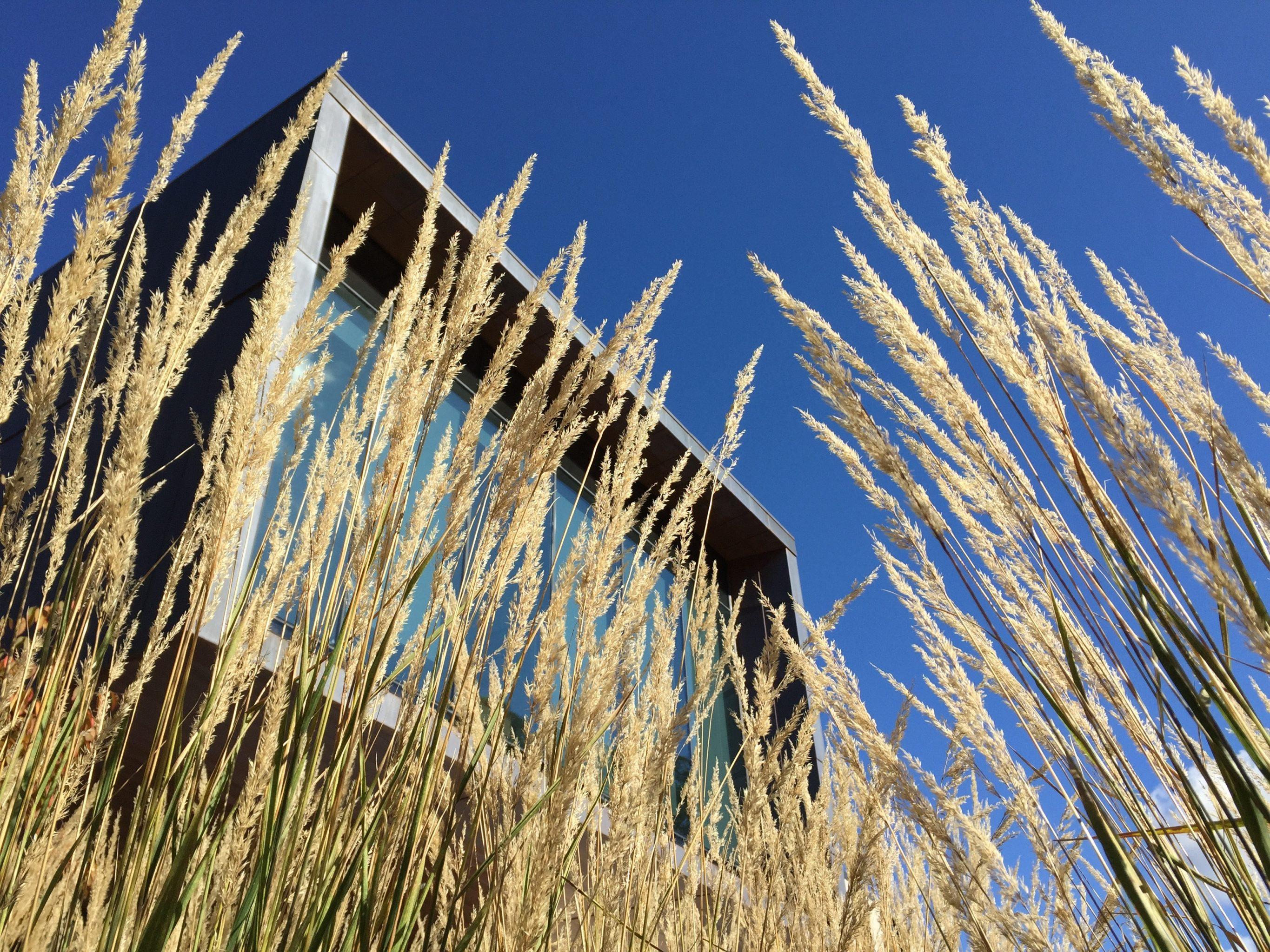 Mikrohaus Tinyhaus Co Im Blog Von Badtke Architektur
